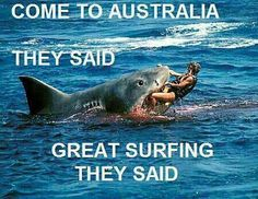 Come to Australia they said, ... The surf is mighty fine they said !