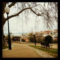 Jardim do Torel in Lisboa, Lisboa Ich mag die Standseilbahnen, Straßenbahnen und Aufzüge in Lissabon - am liebsten aber die Lavra-Seilbahn. Die nehme ich, wenn ich zum Torel-Park oder zum Campo Martires de Patria fahren will. Diese zwei Gärten auf dem Hügel über der Stadt laden zu schönen Spaziergängen ein.