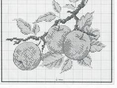Manzanas frescas 1