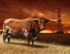 Texas Longhorn Bull and Oil Derrick. Longhorn Cattle, Longhorn Cow, Longhorn Rind, Only In Texas, Loving Texas, Texas Longhorns, Oklahoma Sooners, Longhorns Football, Texas Bluebonnets