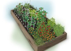 A vegetable garden that is pleasing to the eye and the palate, this grilling vegetable plan from Bonnie Plants packs a raised bed with tomatoes, onions, eggplants, squash and three different herbs. Get the plan at The Home Depot's Garden Club.