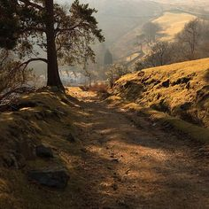 Find images and videos about nature, autumn and fall on We Heart It - the app to get lost in what you love. Places To Travel, Places To Visit, British Countryside, Places Of Interest, Lake District, Cumbria, Beautiful Landscapes, Cool Pictures, Beautiful Places