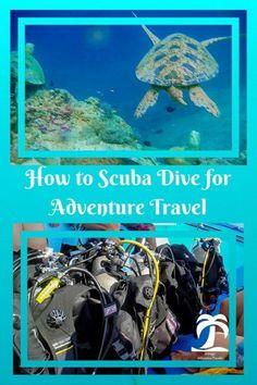 How to Scuba Dive for AdventureTravel - 1AdventureTraveler