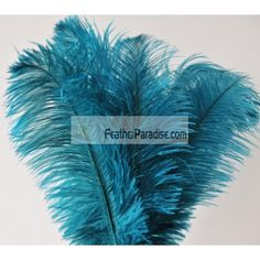 Teal Ostrich Feather 6-8 inch wholesale 12 pieces discount cheap crafts hat trim