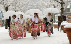 Snow Storm Kills 5 and Injures Over 600 in #Japan