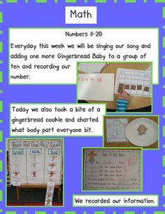 Golden Gang Kindergarten  gingerbread graph