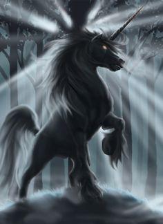 Unicorn | Cryptozoology Break: The Unicorn