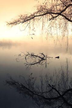 Kayak perfect...