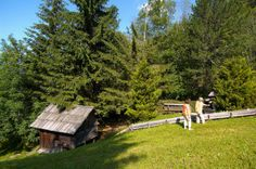 Sinneswanderung zu den Kraftplätzen in Bad Kleinkirchheim. Ob barfuss oder rastend - sinnend im Gras. Nehmen Sie sich Zeit und schärfen Sie Ihre Sinne beim Urlaub in der 5* Thermenwelt Hotel Pulverer