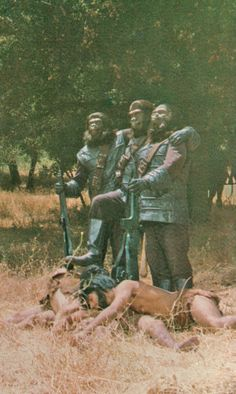 Trophies on the Planet of the Apes Fantasy Movies, Sci Fi Movies, Sci Fi Fantasy, Pierre Boulle, Plant Of The Apes, Night Gallery, Classic Sci Fi, Evil Clowns, Science Fiction Art