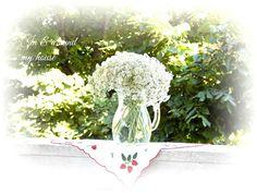 In & around my house My House, Dandelion, Garden, Flowers, Plants, Garten, Dandelions, Lawn And Garden, Gardens