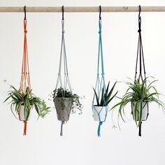 Plant Hanger Medium