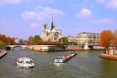 Imagen de un barco, con la Isla de la Cité y la catedral de Notre Dame de fondo