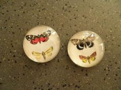 Set of 2 Glass Butterfly Magnets