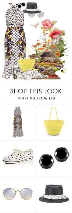 """Walk in the park"" by m-kints ❤ liked on Polyvore featuring Saloni, Salinas, Kate Spade, West Coast Jewelry, Ray-Ban, Maison Michel and PolkaDots"