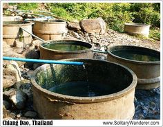 Hot springs in Chiang Dao, Thailand
