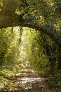 Country Lane - England http://bonitavista.tumblr.com/