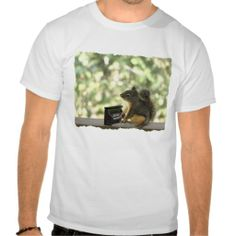 =>Sale on          	Squirrel Playing Piano T-shirt           	Squirrel Playing Piano T-shirt we are given they also recommend where is the best to buyDiscount Deals          	Squirrel Playing Piano T-shirt Online Secure Check out Quick and Easy...Cleck Hot Deals >>> http://www.zazzle.com/squirrel_playing_piano_t_shirt-235082571290478579?rf=238627982471231924&zbar=1&tc=terrest