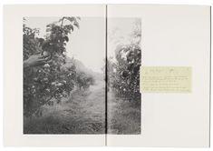 Raymond Meeks: Where Objects Fall Away