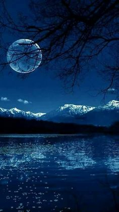 Blue moon on the water Moon Photos, Moon Pictures, Pretty Pictures, Beautiful Moon, Beautiful World, Beautiful Images, Ciel Nocturne, Shoot The Moon, Photos Voyages