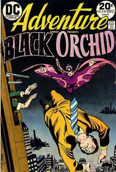 Adventure Comics #430, december 1973, cover by Bob Oksner.