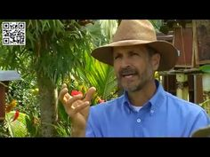 Miel de Abejas   Meliponicultura   TvAgro por Juan Gonzalo A - YouTube