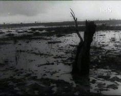 Hiroshima Mon Amour | Download Free Movies: Heaven on Marsh (1949) Augusto Genina Maria Goretti, Hiroshima, Heaven, Movies, Free, Sky, Love, Films, Heavens