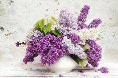 flower picture free hd widescreen - flower category