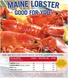 Lobster Nutrition facts.  Maine Lobster is a heart healthy protein, low in fat, calories, and cholesterol!