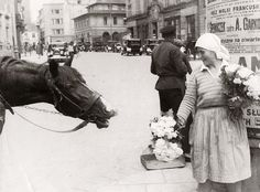 48 Vintage Photos of Life in Warsaw, Poland during the Old Photos, Vintage Photos, Hungry Horse, Interwar Period, Invasion Of Poland, Historical Images, Central Europe, My Heritage, Magical Creatures