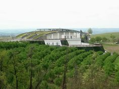 Domenico Clerico winery