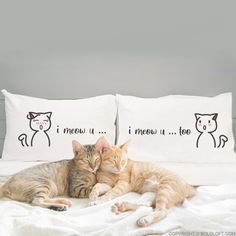Only the cat loving couples know their cat-speak, I Meow You, I Meow You Too! And loving cat owners will find these cat pillowcases irresistible. Let us help you utter the words your cat-loving partners love to hear. This whimsical pillowcase set will remind them of your love day after day. Say I love you in the sweetest, most meoww-worthy way! Cat Gifts For Her, Valentines Day Gifts For Her, Gifts For Your Boyfriend, Cat Lover Gifts, Cat Lovers, Couple Pillowcase, Couples Coffee Mugs, Cat Couple, Cat Themed Gifts