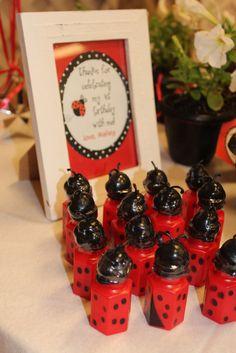 Ladybug Party Favors #ladybug #partyfavors