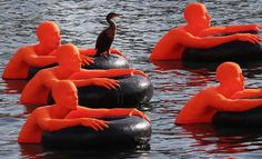 Art for the public - The Boston Globe - A bird sits on SOS (Safety Orange Swimmers,) an art exhibit created by Ann Hirsh and Jeremy Angier that floats in the Fort Point Channel in Boston. Each orange foam figure represents nearly 1 million of the refugees in the world today. (David L. Ryan/Globe Staff)