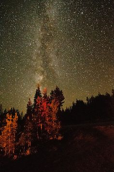 Rabbit Ears Milky Way................................ thk:::::::Jackson county, Colorado.