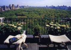 Dream New York Terrace....why leave the city