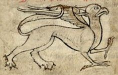 Medieval Bestiary : Griffin Gallery Bibliotheque Nationale de France, lat 6838B, Folio 4r