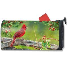 Cardinal Lookout Large Mailwrap