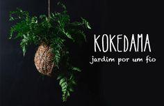 """Kokedama: o que é e como fazer passo-a-passo - o arranjo """"bola de musgo"""" http://www.dcoracao.com/2015/02/kokedama-o-que-e-e-como-fazer-passo.html"""