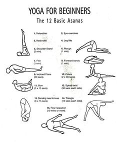 12 Basic Asanas - Yoga For Beginners