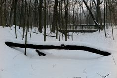 Creek and Bridge Winter