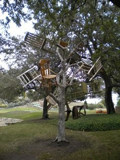 Chair-i-tree! Art in the Garden. San Antonio Botanical Garden, San Antonio Texas