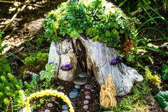 7+ Best Fairy Garden Ideas for Your Inspiration Indoor Fairy Gardens, Miniature Fairy Gardens, Small Gardens, Mini Gardens, Roof Gardens, Fairy Gardening, Fairies Garden, Garden Whimsy, Garden Pests