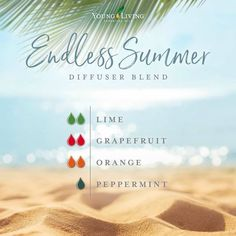 Discover the large variety of products for your healthy home and body that Young Living sells. Essential Oils Guide, Doterra Essential Oils, Yl Oils, Young Living Oils, Young Living Essential Oils, Essential Oil Combinations, Essential Oil Diffuser Blends, Aromatherapy Oils, Diffuser Recipes