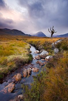 Rannoch Moor, Scotland. Hiked this moor twice on the West Highland Way - one of the most beautiful places I've ever been!