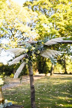 #photographie #photography  #mariage #wedding #couple #nature #photographe #photographer #lille #nord #france Dandelion, France, Couples, Flowers, Nature, Plants, Wedding, Weddings, Photography