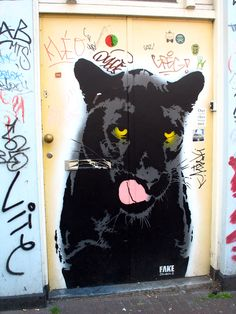 Graffiti Door, Amsterdam, Netherlands  2012 / by Marny Perry
