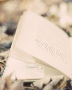 Between the pages of a book.