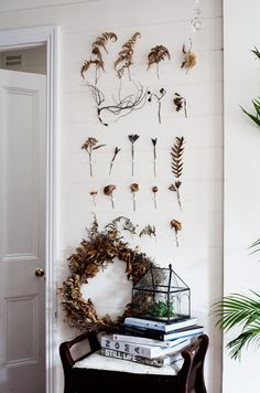 dried plant wall