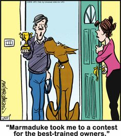 Today on Marmaduke - Comics by Brad Anderson Funny Animal Pictures, Funny Animals, Cute Animals, Dog Quotes, Animal Quotes, Funny Cartoons, Funny Comics, Great Dane Funny, Dog Comics